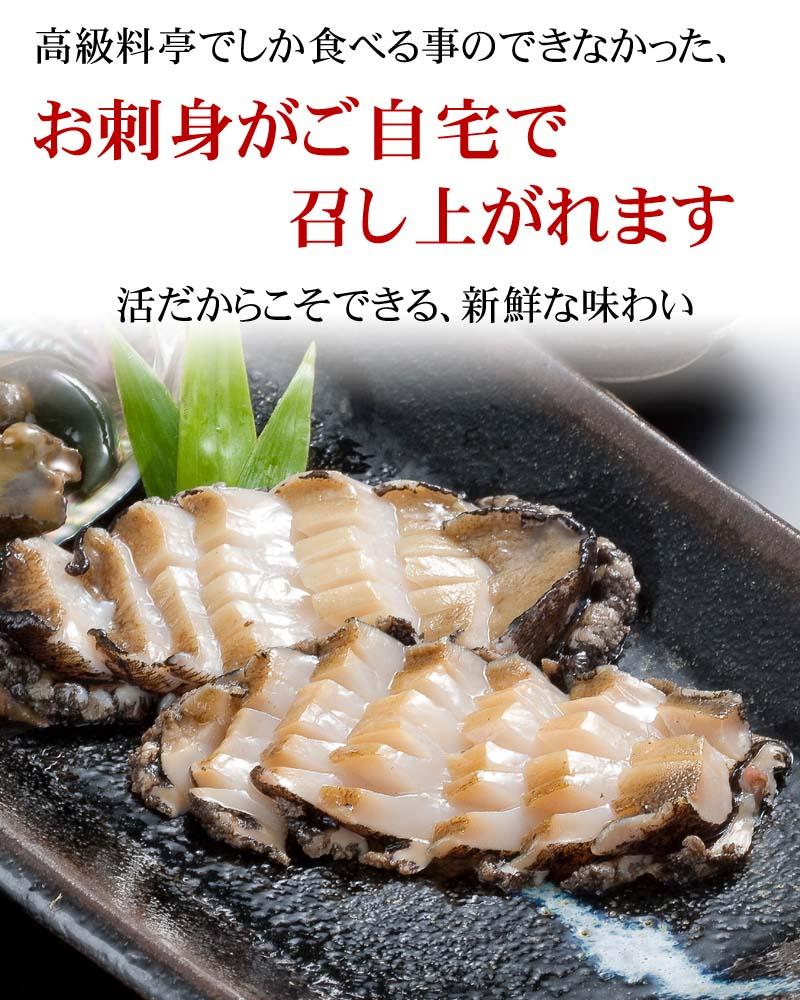 お刺身で食べられる鮮度です