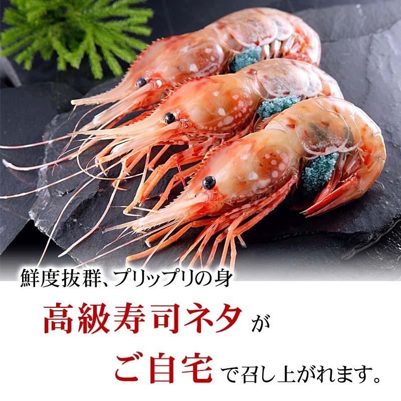 お刺身で食べられるほど新鮮!