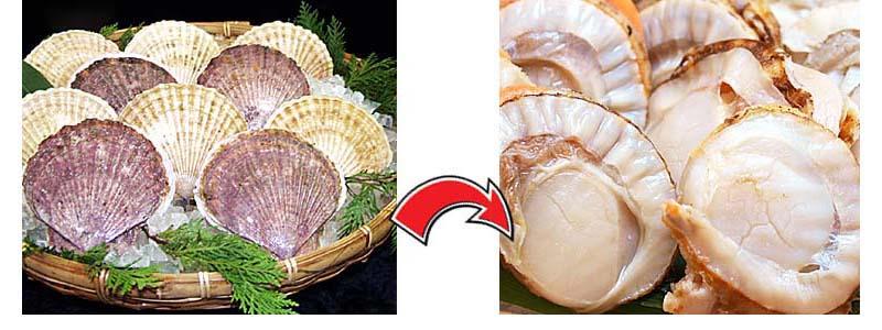 殻をはずしてむき身にした帆立