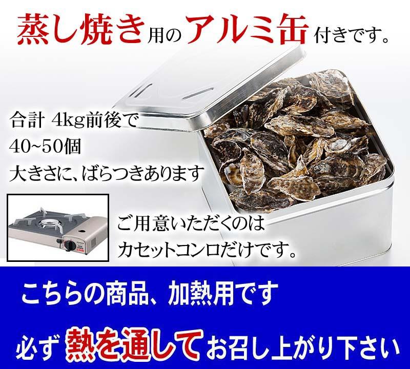 【送料無料】サロマ産牡蠣 カキガンガン蒸し 4kg前後(1年貝・小型40〜60個) 自宅で蒸したての牡蠣が食べられます!カンカン焼き