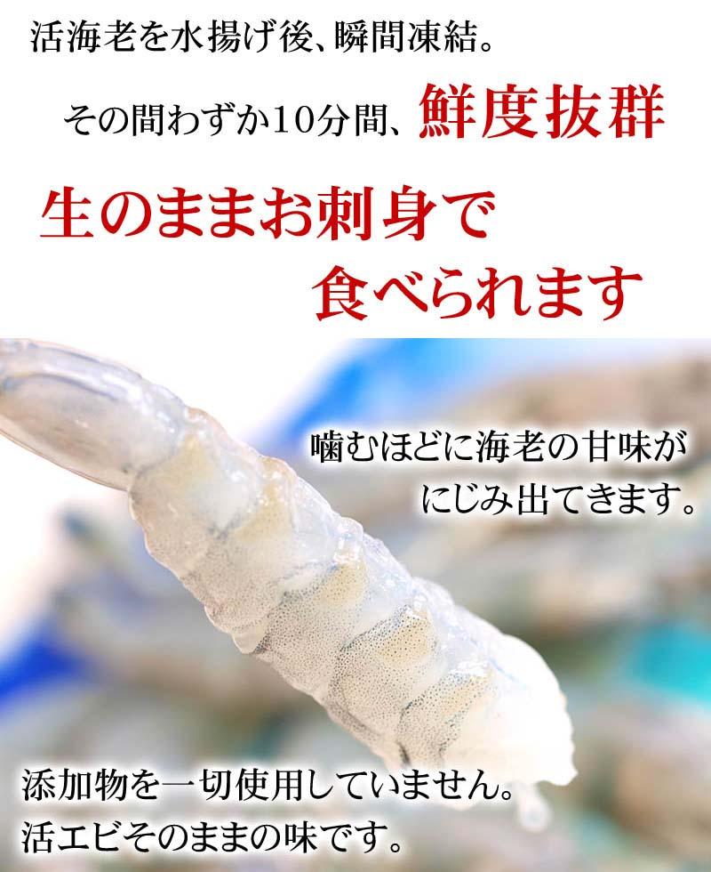 お刺身で食べられる鮮度のエビです
