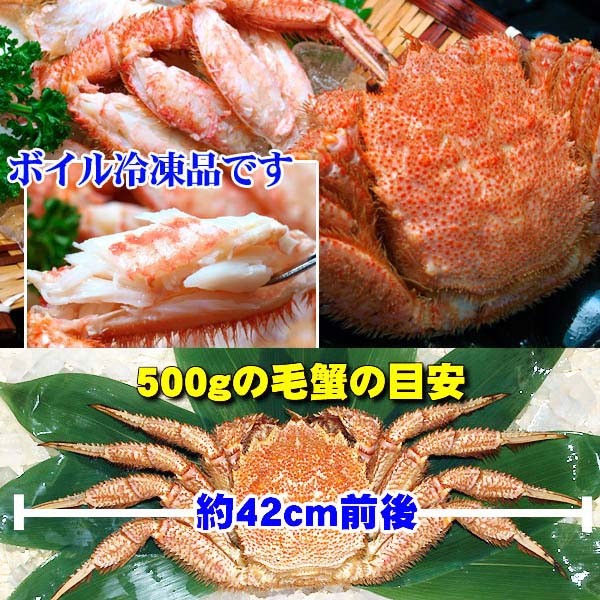 ボイル済みの冷凍毛蟹。自然解凍後お召し上がりください
