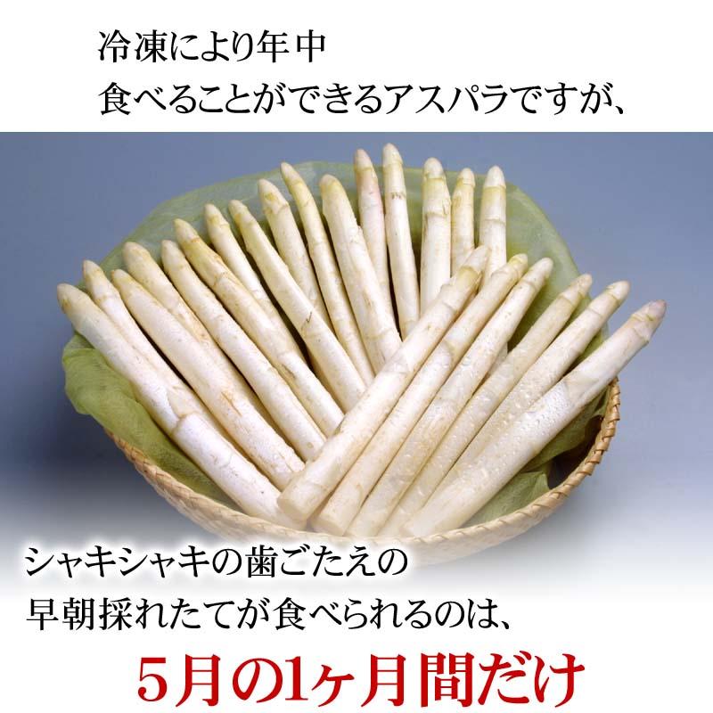 北海道産のあすぱらを食べられるのは春だけ