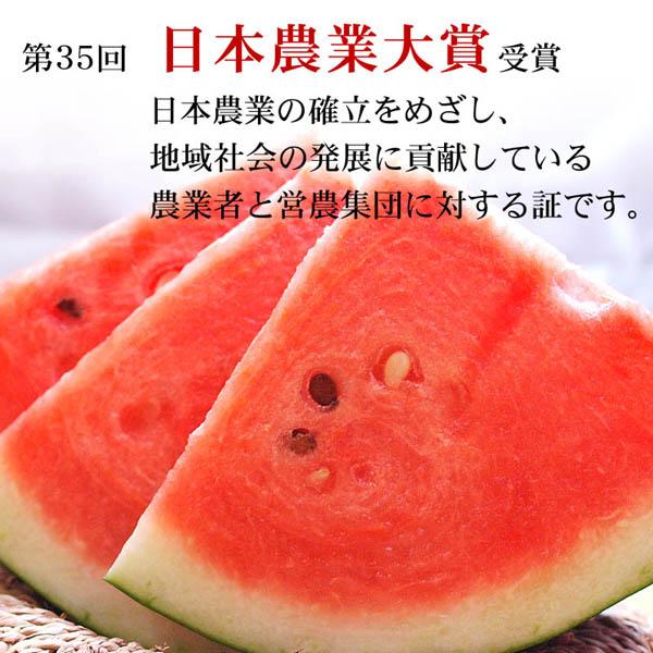 日本農業大賞受賞の黒い皮の西瓜