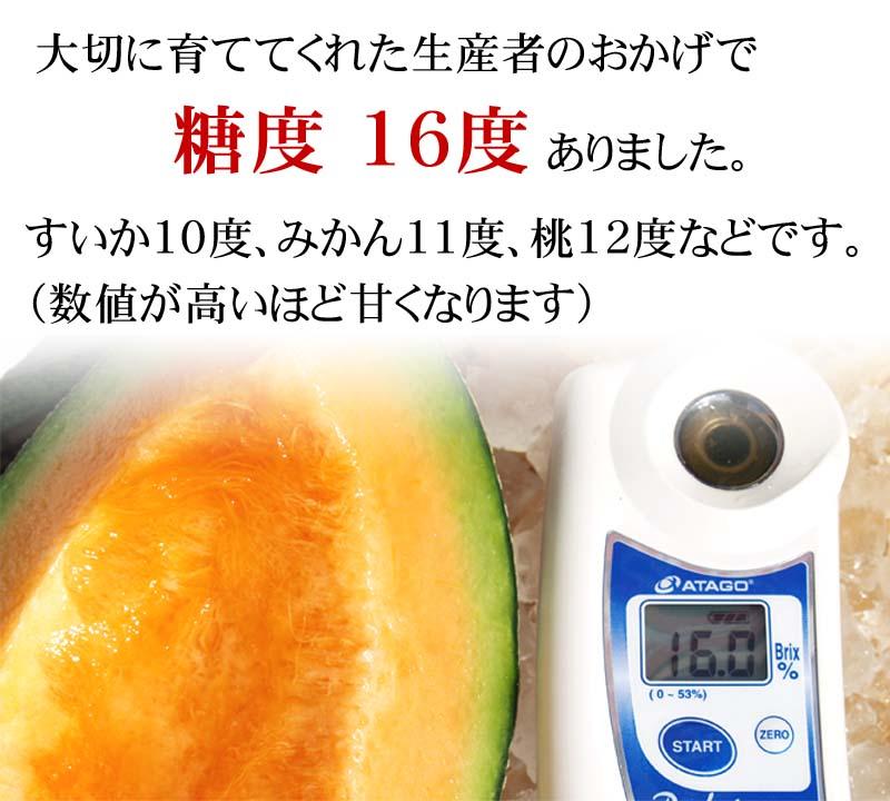 糖度16度の甘いメロンです