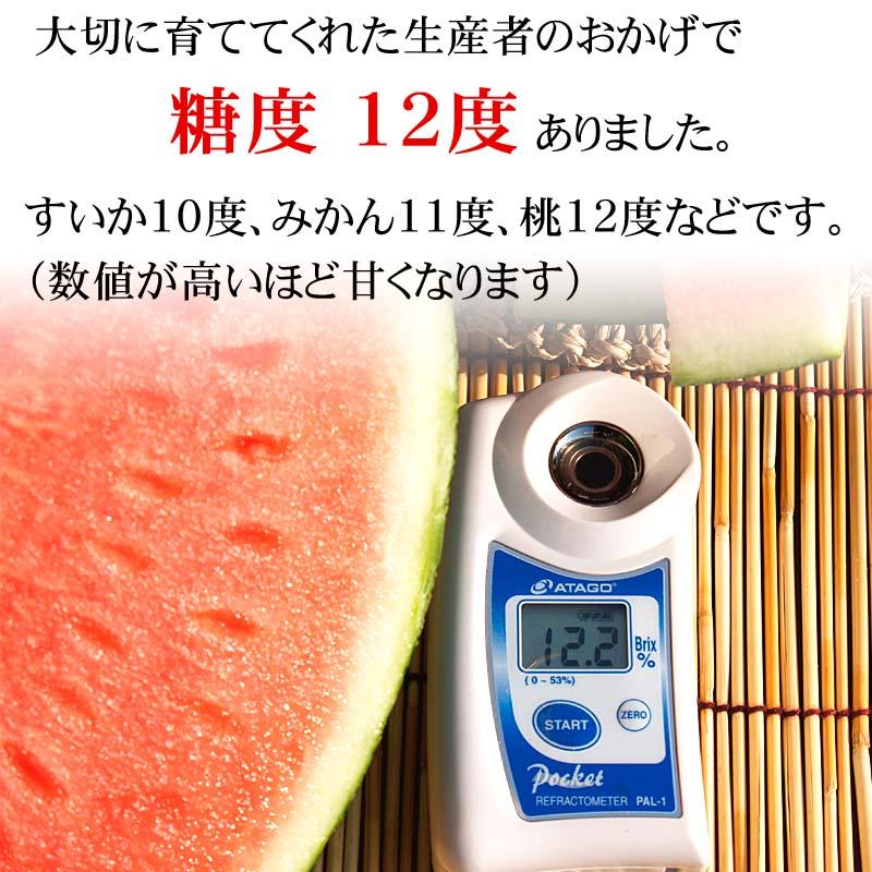 糖度12度の甘い西瓜