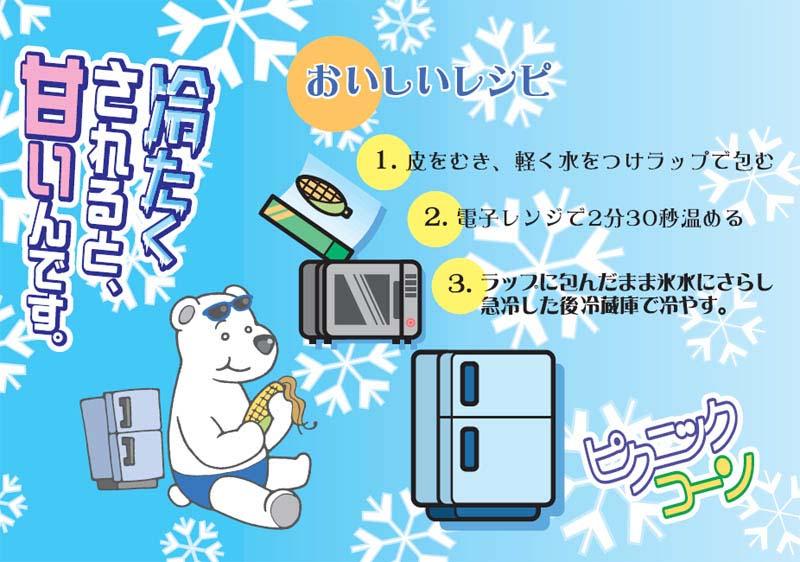 【送料無料】 ピクニックコーン 北海道名寄産 小型とうもろこし 11本入り