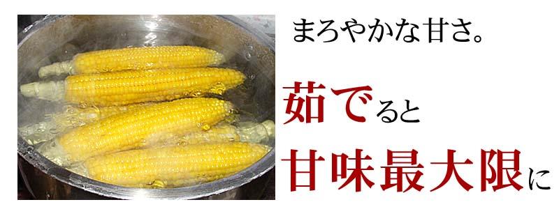 トウモロコシが茹であがると、さらに黄色が鮮やかになります。