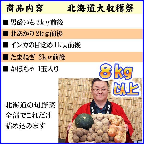 【送料無料】北海道大収穫祭!じゃがいも・かぼちゃ・たまねぎ たっぷり野菜詰め合わせ!(男爵いも・きたあかり・インカの目覚め)