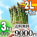 【送料無料】極太2Lサイズ グリーンアスパラ 3kg前後 北海道 富良野・美瑛産のあすぱら(ギフト用)