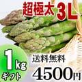 【送料無料】超極太3Lサイズ グリーンアスパラ 1kg前後 北海道 富良野・美瑛産のあすぱら(ギフト用)
