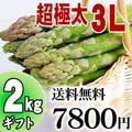 【送料無料】超極太3Lサイズ グリーンアスパラ 2kg前後 北海道 富良野・美瑛産のあすぱら(ギフト用)