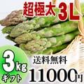 【送料無料】超極太3Lサイズ グリーンアスパラ 3kg前後 北海道 富良野・美瑛産のあすぱら(ギフト用)