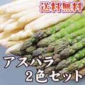 【送料無料】朝採りアスパラ 2種類の味が楽しめるセット 合計2kg(グリーンアスパラ1kg、ホワイトアスパラ1kg)