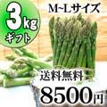 【送料無料】グリーンアスパラ M〜Lサイズ混合 3kg前後 北海道 美瑛産のあすぱら(ギフト用)