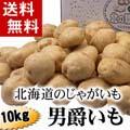 【送料無料】北海道産じゃがいも 男爵いも 10kg (芋・越冬ジャガイモ)