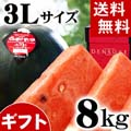 【送料無料】当麻町産 デンスケスイカ 秀品 3Lサイズ 8〜9kg 黒皮のスイカです。【旬のフルーツ くだものギフト】