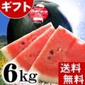 【送料無料】当麻町産でんすけすいか 秀品 Lサイズ 6〜7kg 黒皮のスイカです。【旬のフルーツ くだものギフト】