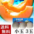 【送料無料】赤肉メロン 北海道メロン 1.1kg前後×3玉入り(小玉サイズ)