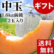 【送料無料】赤肉 富良野メロン 1.6kg前後×2玉入り(中玉サイズ) 北海道夏の旬のフルーツ、ふらの産メロン【ギフト】