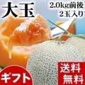 【送料無料】赤肉 富良野メロン 2kg前後×2玉入り(大玉サイズ) 北海道夏の旬のフルーツ、ふらの産メロン 【ギフト】