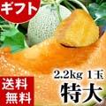 【送料無料】赤肉 富良野メロン 2.2kg前後×1玉入り(特大サイズ) 北海道夏の旬のフルーツ、ふらの産メロン【ギフト】