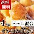 【送料無料】北海道産じゃがいも インカのめざめ 約4kg (新ジャガイモ S〜Lサイズ混合 インカの目覚め・芋)