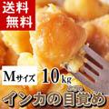 【送料無料】北海道産じゃがいも インカのめざめ 約10kg (新ジャガイモ Mサイズ インカの目覚め・芋)