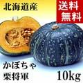 【送料無料】カボチャ 栗将軍 合計10kg(5〜7玉入り)