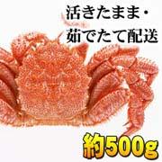 北海道産 活毛ガニ通販 500g前後 かにの美味しさを味わうなら、やっぱり活蟹!活け毛がに通販