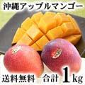 【送料無料】沖縄産 アップルマンゴーお取り寄せ 合計1kg(2〜4玉入り)