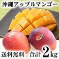 【送料無料】沖縄産 アップルマンゴー通販 合計2kg(4〜8玉入り)
