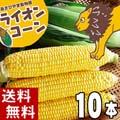 【送料無料】 北海道旭川近郊産 とうもろこし 旭山動物園ライオンコーン(ゴールドラッシュトウモロコシ) 10本入り