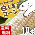 【送料無料】 北海道産 とうもろこし 旭山動物園白くまコーン(ピュアホワイト・ホワイトレディー・クリスピーホワイト) 10本入り