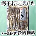 【メール便なら送料無料】寒干し若シシャモ 70g 北海道の珍味乾物ししゃも