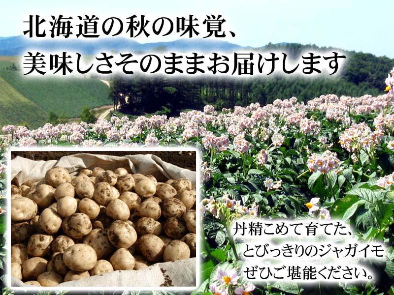 北海道から秋の味覚そのままお届け!