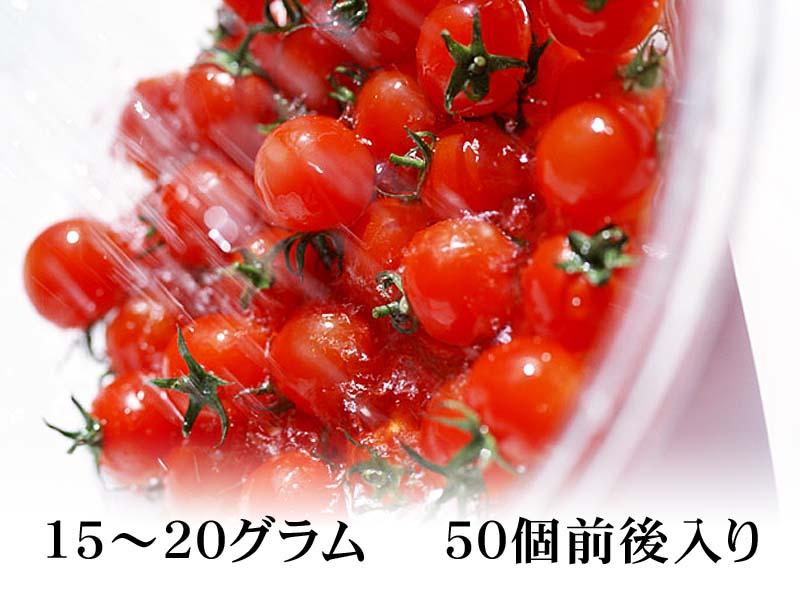 ミニトマト ぷちぷよ