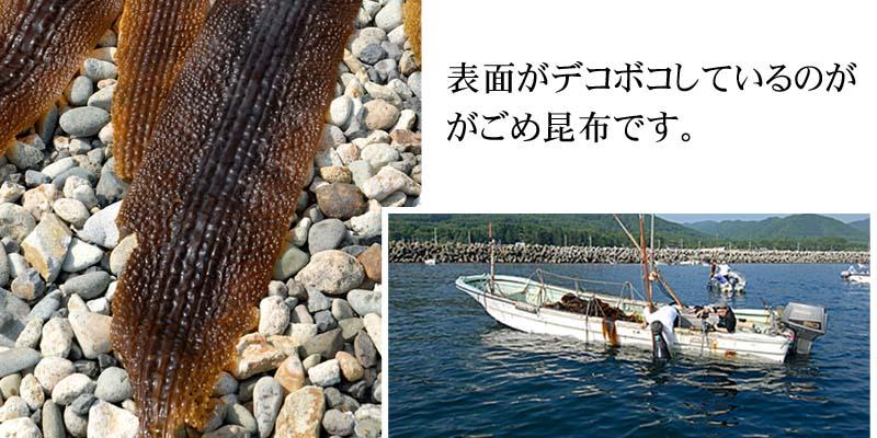 ガゴメ昆布漁